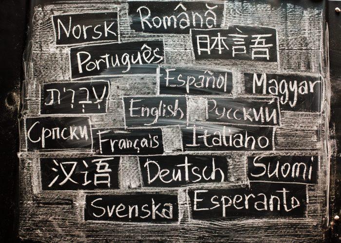 Cunoştinţe de limbi străine – furnizor de îngrijiri